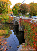 Milford Bridge in Autumn - Vertical