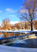 Winter at the Duck Pond - Vertical